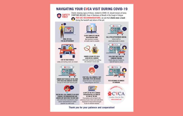 CVCA infographic